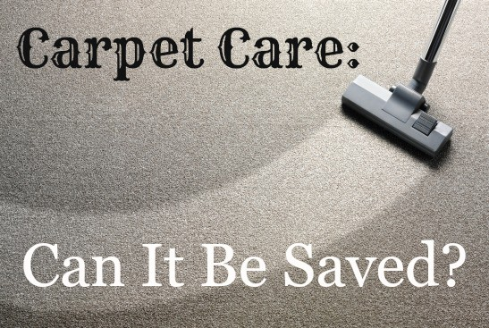 carpet care and spot cleaning