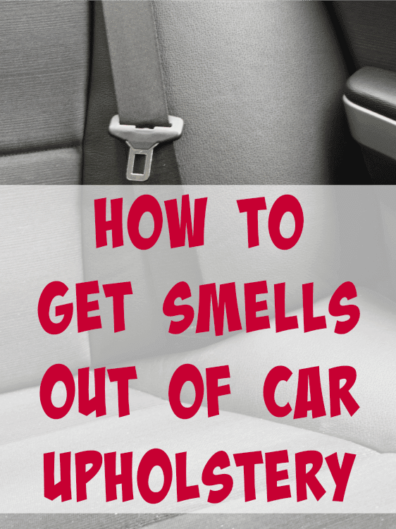 get smells out of car
