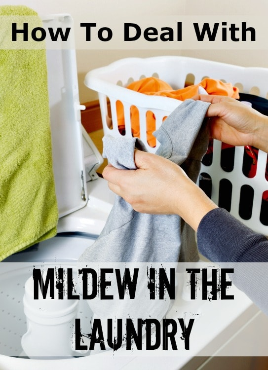 how to deal with mildew in the laundry