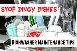 stop dingy dishes