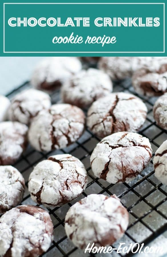 Chocolate crinkles, black and whites, krinkles, or kringles - soft & chocolatey cookies, the powdered sugar adds a nice counterpoint, with color & taste.