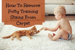 how to clean stains out of carpet