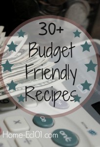 Home Ec 101 has over 30 recipes that are kind to your wallet