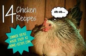 More Chicken Recipes
