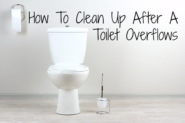How to Clean Up After a Toilet Overflows