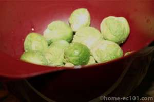 washed sprouts