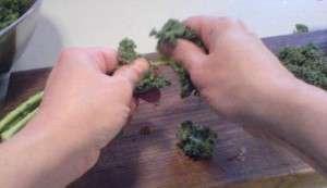 Kale - tear into it