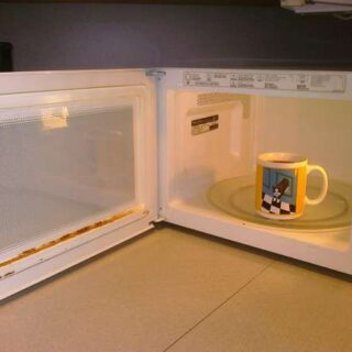 How to Repair a Rusty Microwave