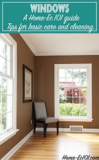 A guide to cleaning and caring for your windows