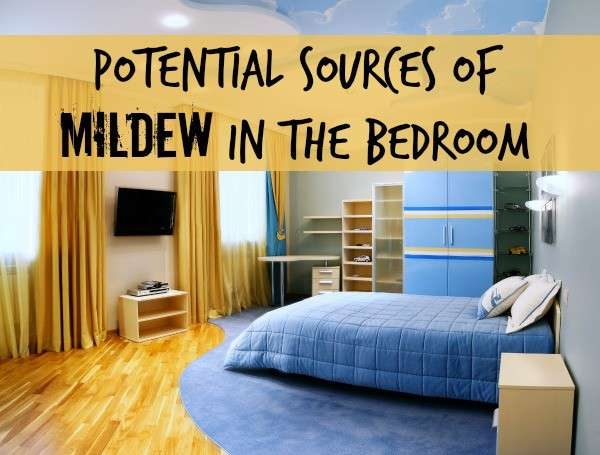 Potential Sources For Mildew Odor In A Bedroom Home Ec 101