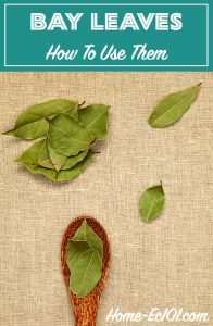 I'd dismissed them, not realizing that they were the very thing that made the aroma of mom's vegetable soup so comforting. Here's how to use bay leaves in many recipes.