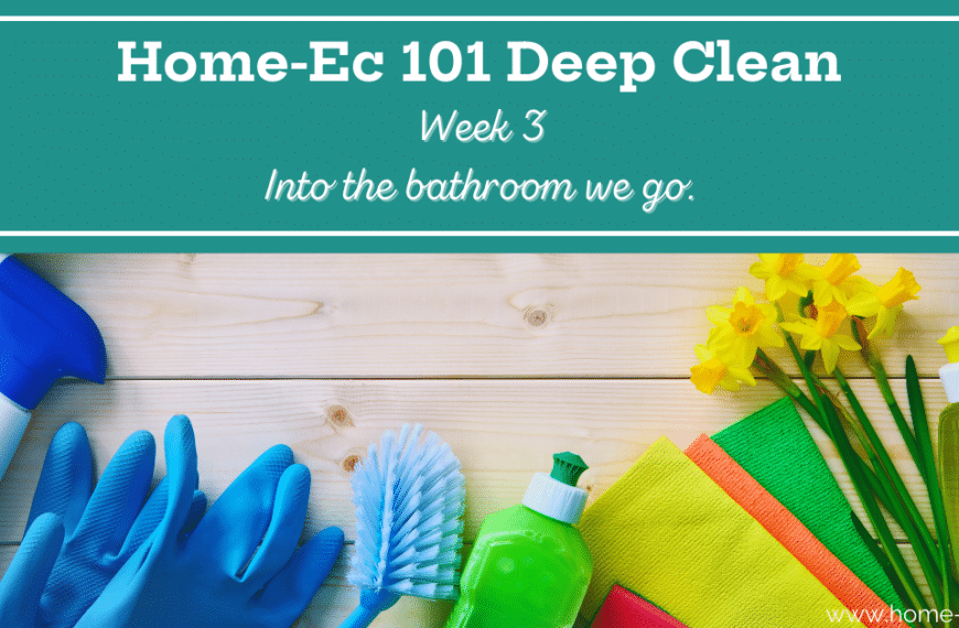 Bathroom Cleaning 101: What you Need, What to Use and How to Use It
