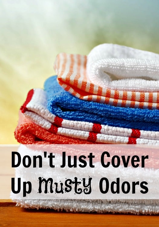 how to get rid of musty odors