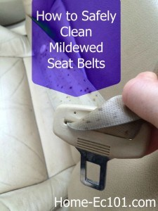 How to Clean a Mildewed Seat Belt