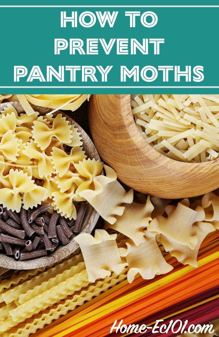 Pantry Moths in Pasta