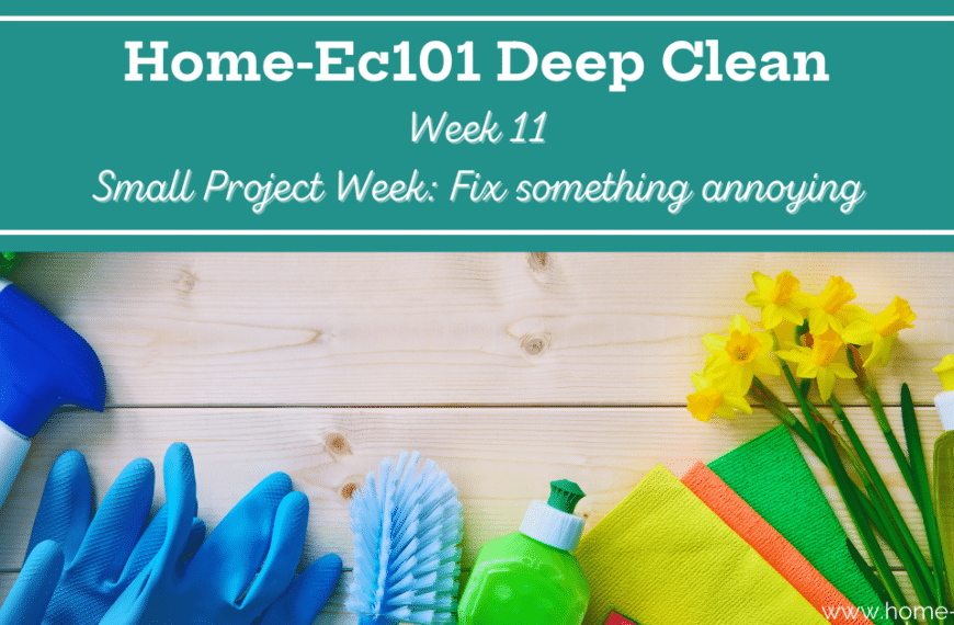 The Deep Clean: Small Project Week